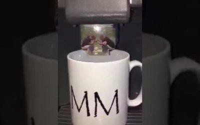zo nu eerst een bakkie koffie